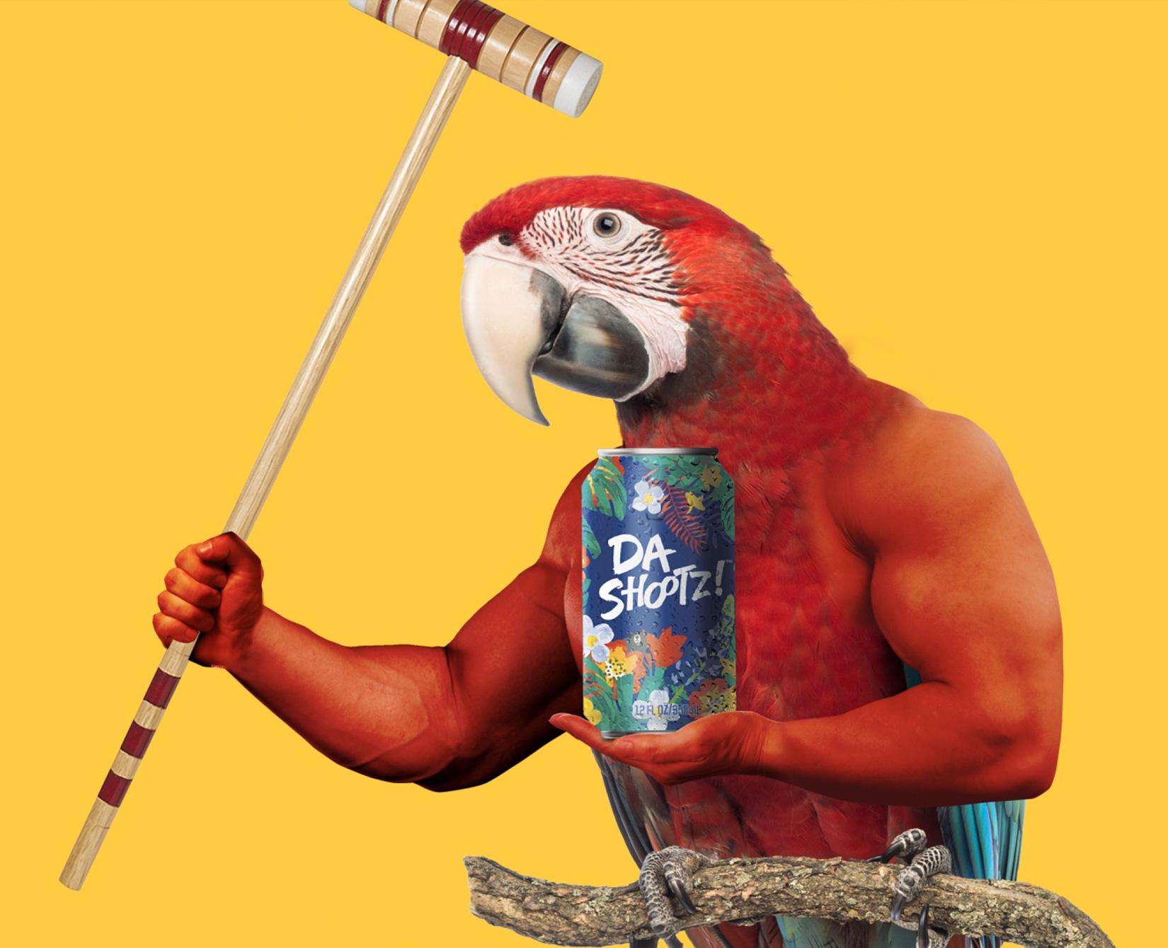 img_pair_it_parrot